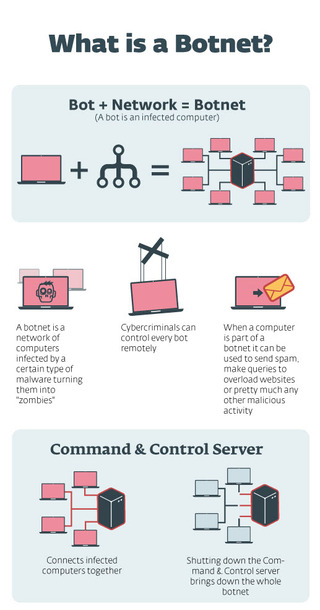 Infographic showing what a botnet is and how it works